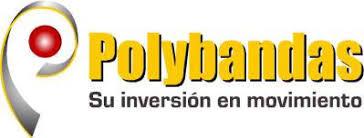 Capacitación Area Comercial Polybandas