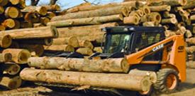 Exportaciones forestales acumuladas a marzo de 2018