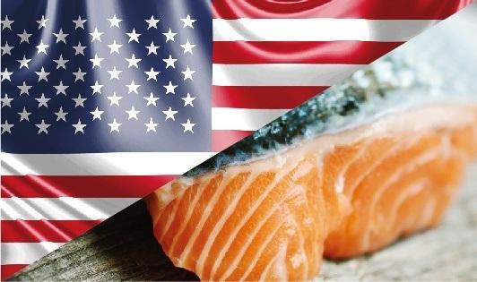 Envíos de salmón chileno con valor agregado crecen 16,8%