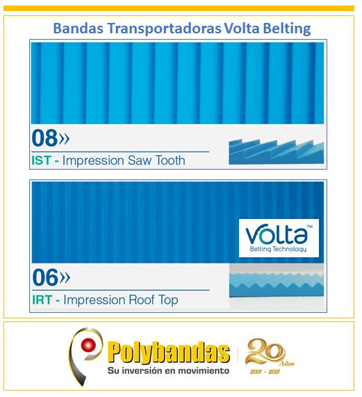 ¿Sabías qué existen bandas Volta Belting con distintos perfiles superiores para variadas aplicaciones en la industria del Salmón entre otras ?