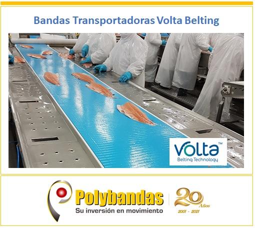 ¿Sabías qué los materiales termoplásticos sólidos de Volta Belting, ofrecen una superficie de transporte continua que no absorbe el agua y es resistente a los aceites y químicos, evitando que los restos de producto penetren en la banda y la contaminen?