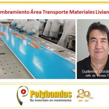 Nombramiento: Guillermo Gordillo E.  / Jefe de Ventas área TML
